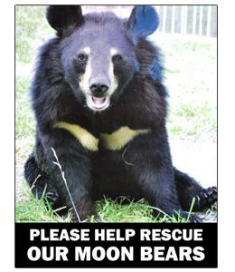 Save the Moon Bears