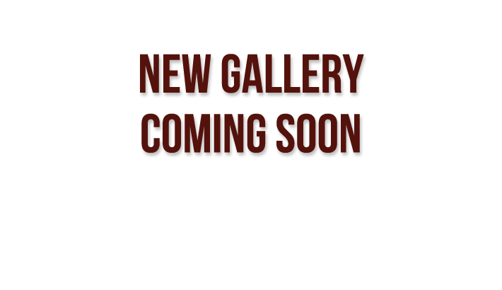 New Gallery Coming Soon