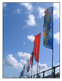 Appledore Arts Festival Flags